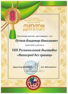 Диплом Пучков В.Н.