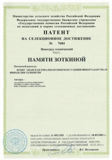 pamyati_zotkinoy_2_0.jpg
