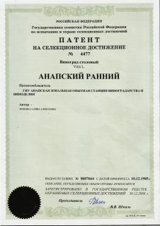 patent_anapskiy_ranniy.jpg