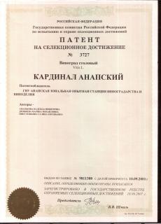 patent_kardinal_anapskiy.jpg